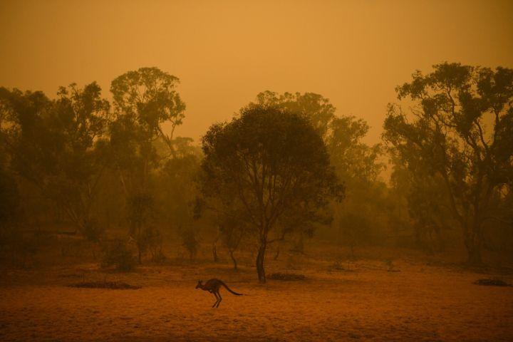 Austrália - investimento no turismo_incêndios